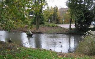 Stadtpark1