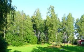 Eknäs Camping
