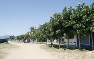 campingplayayfiesta
