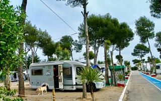 campingdidota