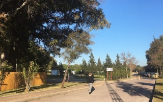 Las Dunas de San Anton